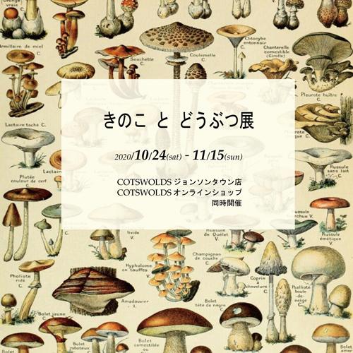 きのことどうぶつ展2020-insta.png